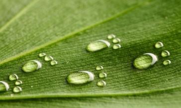 reduce-your-water-footprint.jpg